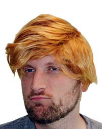 Donald Trump Deluxe Adult Wig from - Fairly Odd Novelties